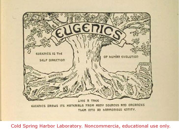 book cover titled eugenics with background image of a large tree